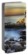 Surreal Lioness Portable Battery Charger