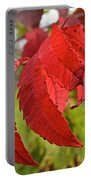 Surreal Sumac Portable Battery Charger