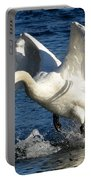 Swan In Action Portable Battery Charger