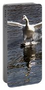 Swan Touches Down Portable Battery Charger