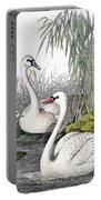 Swans, C1850 Portable Battery Charger