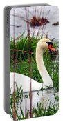 Swan's Marsh Portable Battery Charger