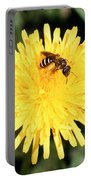 Sweat Bee Portable Battery Charger by Science Source