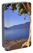 sycamore tree at the Lake Maggiore Portable Battery Charger