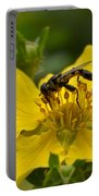 Syritta Pipiens Portable Battery Charger