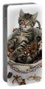 Tabby Kitten In Potpourri Basket Portable Battery Charger