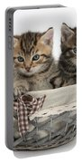 Tabby Kittens In A Basket Portable Battery Charger