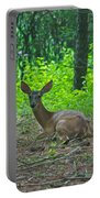 Taking A Break 7388 1776 Portable Battery Charger