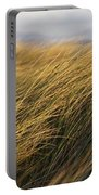 Tall Grass Blowing In The Wind Portable Battery Charger