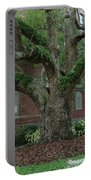 Tampa Tree  Portable Battery Charger