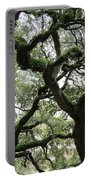 Tampa Trees Portable Battery Charger