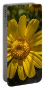 Tanacetum Portable Battery Charger