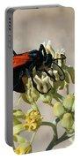 Tarantula Hawk Wasp Portable Battery Charger