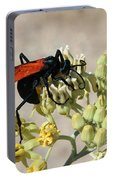 Tarantula Hawk Wasp Portable Battery Charger