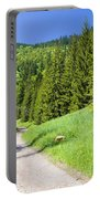 Tatra Mountains In Poland Portable Battery Charger
