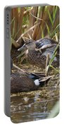 Teal Pair In The Cattails Portable Battery Charger