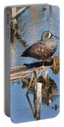 Teal Standing On One Leg Portable Battery Charger