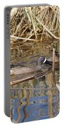 Teal Swiming Along Cattails Portable Battery Charger