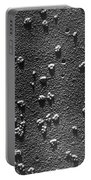 Tem Of Rabbit Reticulocyte Polyribosomes Portable Battery Charger