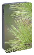 Tender Pines Portable Battery Charger