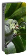 Tennesse Warbler Eating Mangrove Portable Battery Charger
