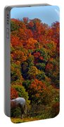 Tennessee Fall Portable Battery Charger
