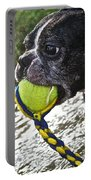 Tennis Ball Mist Portable Battery Charger