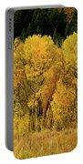 Teton Autumn Foliage Portable Battery Charger