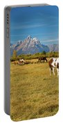 Teton Horses Portable Battery Charger