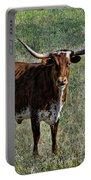 Texa Longhorn Portable Battery Charger