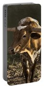 Texas Longhorn # 4 Portable Battery Charger