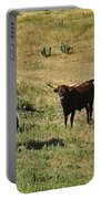 Texas Longhorns Panoramic Portable Battery Charger