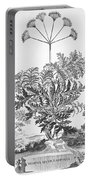 Thapsia Major Latifolia Portable Battery Charger