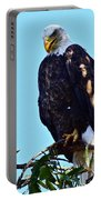 That Eagle Stare Portable Battery Charger