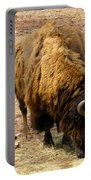The American Buffalo Portable Battery Charger