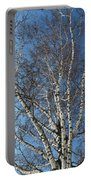 The Birch Portable Battery Charger