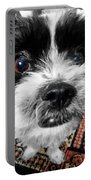 The Black And White Dog Portable Battery Charger