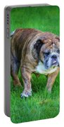 The Bulldog Shuffle Portable Battery Charger