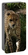 The Cheetah 3 Portable Battery Charger