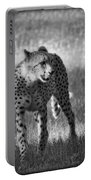 The Cheetah  Portable Battery Charger