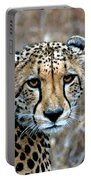 The Cheetah Stare Portable Battery Charger