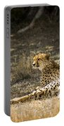 The Cheetah Wakes Up Portable Battery Charger