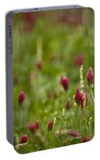 The Clover Field Portable Battery Charger