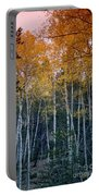 The Colors Of Fall II Portable Battery Charger