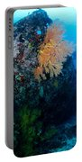 The Coral Encrusted Stern Portable Battery Charger