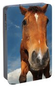 The Curious Horse Portable Battery Charger