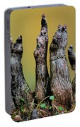 The Cypress Knees Chorus Portable Battery Charger