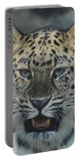 The Eyes Of A Jaguar Portable Battery Charger
