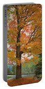 The Fay Tree Portable Battery Charger
