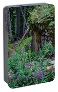 The Forest Trail Portable Battery Charger